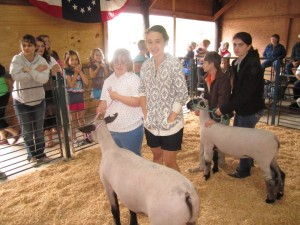 Cover photo for 55th Annual Beaufort-Washington Livestock Show and Sale