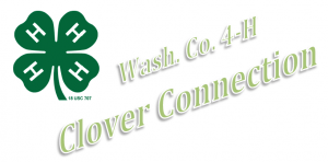 Cover photo for 4-H Clover Connection - Fall 2014