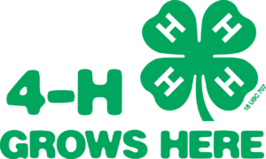 Cover photo for NC 4-H Hall of Fame Nominations