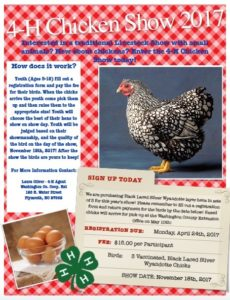 Cover photo for Call to Reserve Your 4-H Layer Hens Today!