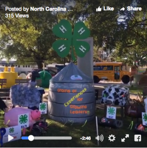 Decorated hay bale at the fair