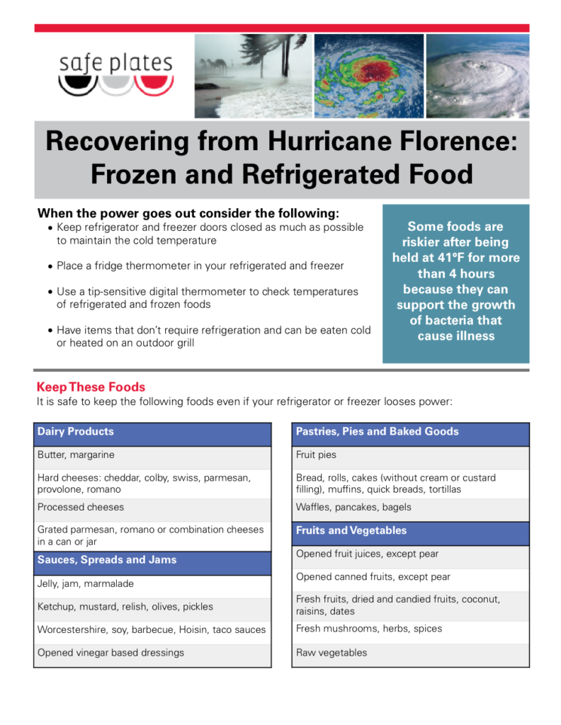 Frozen food flyer image