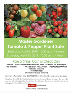 Veggie Transplant Sale-Flyer