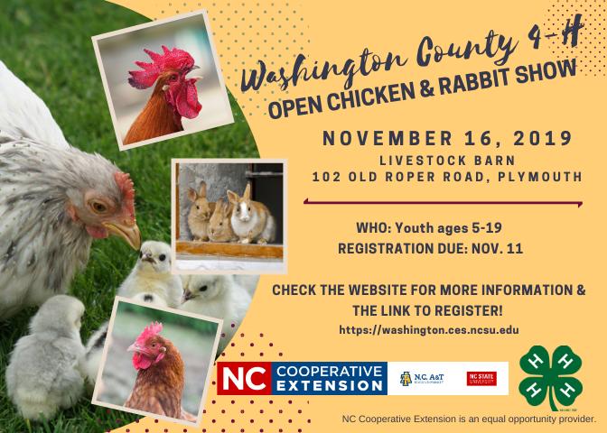 Chicken and Rabbit Show Flyer